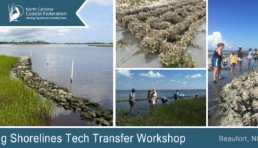 2019 Living Shorelines Tech Transfer Workshop in Beaufort, NC.