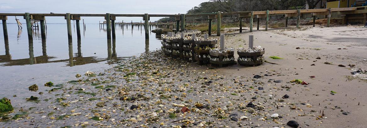 Low Wave Energy Shoreline Stabilization